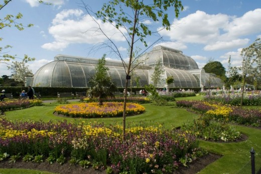 Kew Royal Botanical Gardens and Thames Hop On Hop Off River Cruise