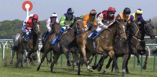 Spend a wonderful day at the races with our horse racing package for two!