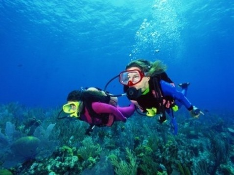 development and use the techniques and the psychological concerns of scuba diving