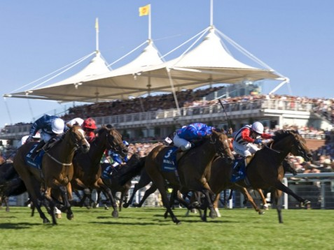 Go horse racing with our experience package for two