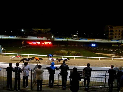 Birmingham Greyhound Racing