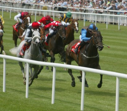 Enjoy a day at the races in Ireland