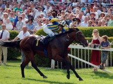 Horse Racing Day Out - a Day For Two At One of Our 48 Racecourses