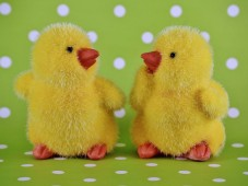 Easter gifts for him and her special experiences easter gifts for him and her negle Choice Image